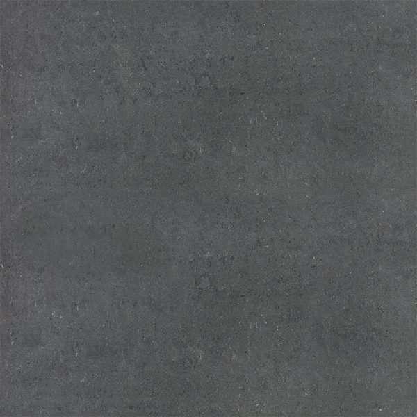 segment_carbon