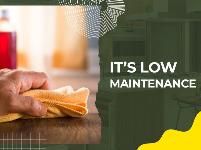 It's Low Maintenance